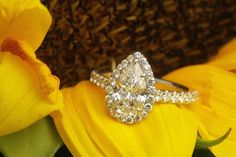 Pear Diamond Halo Ring by David Klass Jewelry Pear Diamond, Halo Diamond, Halo Rings, David, Engagement Rings, Jewelry, Enagement Rings, Wedding Rings, Jewlery