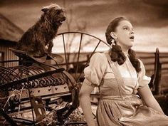 : )  'Over the Rainbow'  in Wizard of Oz