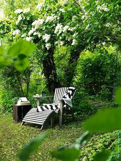Tarde de descanso en el jardín