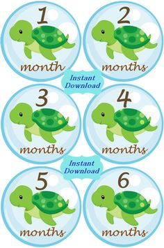 DIY- Baby Sea Turtles Monthly Birthday Stickers plus Just Born, photo… Sea Turtle Nursery, Baby Sea Turtles, Baby E, Diy Baby, Baby Boy Shower, Baby Shower Gifts, Baby Showers, Turtle Party, Everything Baby