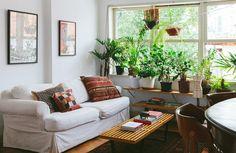 01-decoracao-plantas-apartamento-clima-praia