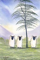 Art: Summer sheep 0001 by Artist KJ Carr