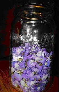 canning violet jelly... and other interesting canning wonders