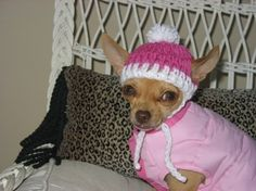 Crocheted Chihuahua Pink with White Trim Beanie by BlancasCrafts, $10.00