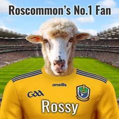 Unique gift for any GAA fan for any occasion. This one is the Roscommon GAA fan pet portrait. Design it online. Add your own text and pet photo. We will paint them into the Roscommon GAA team jersey. Made in Ireland - we ship worldwide. Roscommon Gaa, Croke Park, Picture Stand, English Premier League, Female Portrait, Pet Portraits, Your Pet, Pop Culture, Ireland