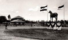Die Ansichtskarte zeigt den großen Turnierplatz mit den Tribünengebäuden und der Pferdeskulptur im Nordosten der Stadt Insterburg. Der Turnierplatz lag östlich des Gutes Georgenhorst (Lenkeningken) jenseits der Bahngleise (Kleinbahnstrecke nach Groß Skaisgirren und Reichsbahnstrecke nach Tilsit über Szillen). Ansichtskarte 1939.