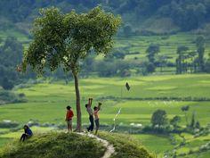 7 September 2014 - Nepalese children fly a kite from a hill in the fields surrounding the Khokana village near Kathmandu