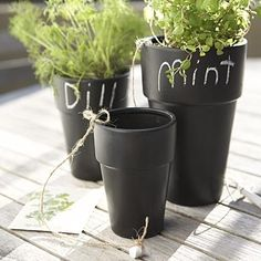 Pintar vasos de barro com tinta de quadro preto... atenção é preciso primer primeiro!