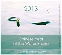 Free Zodiac Animal Forecast for 2013 Chinese Year of the Water Snake   http://www.fengshuiagency.com/uncategorized/chinese-year-of-the-water-snake-2013-forecast/