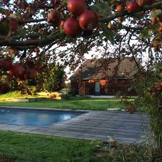 The autumn came to Honfleur - here the pool house - Beehome