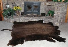 I don't like the Buffalo Hide Rug, especially if it's real, but I do like the fireplace behind.