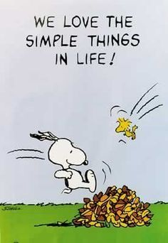 """Snoopy & Woodstock jumping into a pile of autumn leaves ~ """"We love the simple things in life!"""" ❤️"""