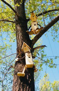 Bird house climber #birdhouses Bird house climber