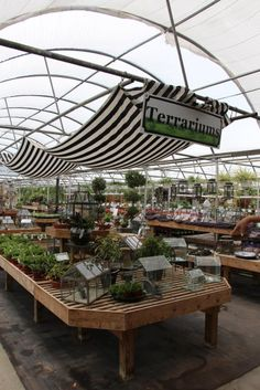 Boost Miniature Gardening Sales -Consumer-Focused Store-Within-A-Store [Slideshow]   Today's Garden Center