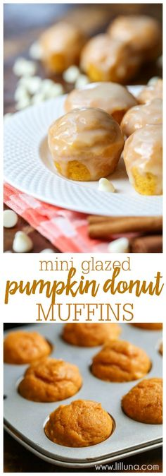 A donut muffin filled with pumpkin and cinnamon flavors, topped with a spiced white chocolate glaze. These mini glazed pumpkin donut muffins are totally irresistible!! #pumpkindonutmuffins #pumpkinmuffins #donutmuffins #minimuffins #muffins Donut Muffins, Mini Muffins, Cinnamon Muffins, Cinnamon Rolls, Mini Desserts, Delicious Desserts, Yummy Food, Oreo Dessert, Pumpkin Dessert
