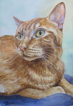 Le portrait original des animaux photo par BeautifulpictureART