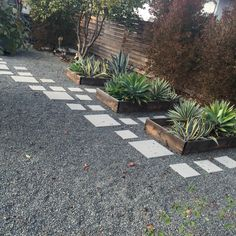 Really like the look of this dark gravel (it's even darker in person)....also the different sized pavers...