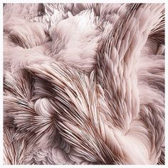 Ethereal textured fabric TheyAllHateUs | Page 4