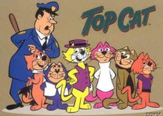 Top Cat TV show - my nickname for my kitty