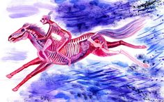 Horse Obsession - A gallery-quality illustration art print by Lisa Hanawalt for sale.