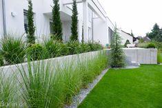 Modern house at adarsh nagar, jalandhar by gagan architects Bauhaus Style, New Britain, Light Of Life, Types Of Plants, Landscape Architecture, Backyard Landscaping, Shrubs, Lawn, Paradise