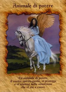 Doreen Virtue, Spiritual Manifestation, Native American Pictures, Unicorn Pictures, Angel Guidance, Power Animal, Angel And Devil, Divine Light, Psychic Mediums