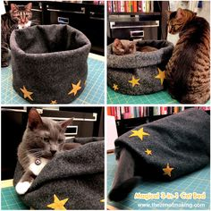 How to make a 3-in-1 cat bed