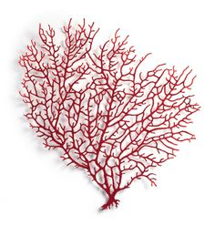 Meredith Woolnough, Textile artist. Red coral branch. #artexhibition #meredithwoolnough #embroideryart #embroidery #natureart #machineembroidery #artinprogress