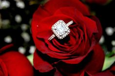 Emerald Cut Wedding Ring {Reverie Of An Old Soul Photography} #vintage #rose #flower #diamond