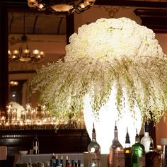 Large Hydrangea and Orchid Centerpiece - very, very dramatic... WOW!!!