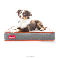 Waterproof Designer Memory Foam Pet Bed! Get yours here ➩➩    http://amzn.to/2pbGjLd