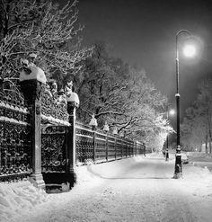 Winter Night -i love snow- Winter Szenen, I Love Winter, Winter Magic, Winter Night, Winter Is Coming, Winter Christmas, It's Coming, Snowy Day, Snow Scenes