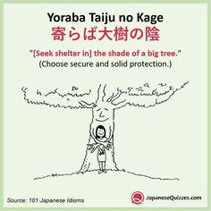寄ら ば 大樹 の 陰 英語
