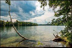 Straussee (Juni 2014) 3 - Flaches Ufer und bedrohlicher Himmel! #Strausberg #Straussee #Deutschland #Germany #biancabuergerphotography #igersgermany #IG_Deutschland  #ig_germany #shootcamp #shootcamp_ig #canon #canondeutschland #EOS70D #pickmotion #diewocheaufinstagram #AOV5k #lake #See #landscape #Landschaft