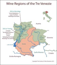 Tre Venezie #wine #wineeducation