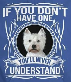 We are absolutely Westie obsessed well ribbon and Westies! Le Terrier, White Terrier, Highlands Terrier, West Highland Terrier, Westie Puppies, Westies, White Dogs, Little Dogs, Animal Design