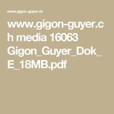 www.gigon-guyer.ch media 16063 Gigon_Guyer_Dok_E_18MB.pdf