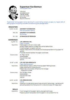 Resume Format For Animation Freshers Pdf File