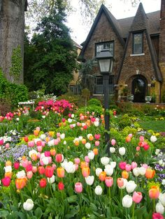39 Affordable Spring Garden Landscaping Ideas You'll Love. Low-maintenance gardens are attractive and simple to enjoy. Old guttering can be utilised to create a stunning hanging garden. Little Gardens, Back Gardens, Small Gardens, Backyard Landscaping, Landscaping Ideas, Landscaping Software, Backyard Ideas, Tiered Garden, Tulips Garden