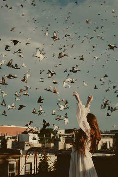 birds in the air // abrandnewlove.com