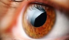 Exercises to fight presbyopia or eyestrain Health Articles, Health Tips, Signs Of Inflammation, Parts Of The Eye, Sense Of Sight, Liver Failure, The Retina, Eye Sight Improvement, Stretch Routine