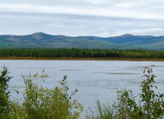 Driving the Klondike Highway on the way to Dawson City was part of our Alaska Highway road trip itinerary. #YukonHo!