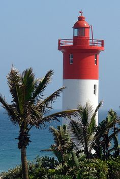 Lighthouse Palm Trees - The Umhlanga Lighthouse, Durban, South Africa. Beautiful Homes, Beautiful Places, Durban South Africa, Lighthouse Pictures, Kwazulu Natal, Beacon Of Light, Cape Town, Palm Trees, Around The Worlds
