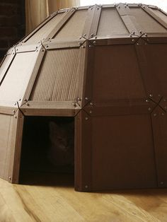 cardboard dome for a cat