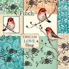 ☯☮ॐ American Hippie Vintage Poster ~ Bird Art Love Peace Dream Fly Sing Decoupage Vintage, Decoupage Paper, Decoupage Ideas, Paper Birds, Vintage Birds, Background Pictures, Illustrations, Bird Art, Bird Feathers