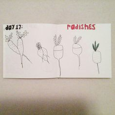 Day 17: radishes #sketchbook #creativebug #lisacongdon
