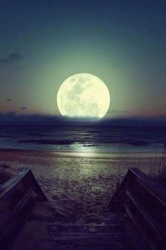 Moonlit beach...