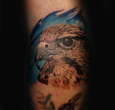 Explore bodacious birds with the top 90 best falcon tattoo designs for men. Discover cool winged ink ideas and turn your rivals into mere prey. Head Tattoos, Cool Tattoos, Tatoos, Falke Tattoo, Small Falcon, Header Pictures, Facebook Profile Picture, Twitter Cover, Twitter Image