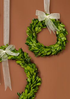 6-, 7 1/2-, and 10-inch Ribboned Boxwood Wreath Set