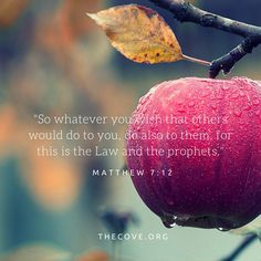 """""""So whatever you wish that others would do to you, do also to them, for this is the Law and the prophets."""" Matthew 7:12 #Scripture #BibleVerse"""